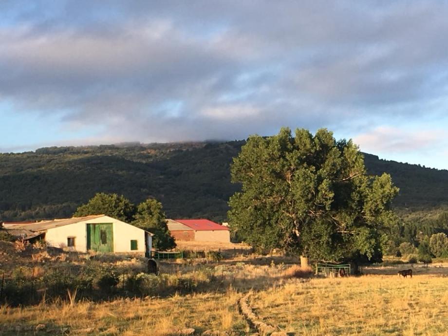Gredos.jpg